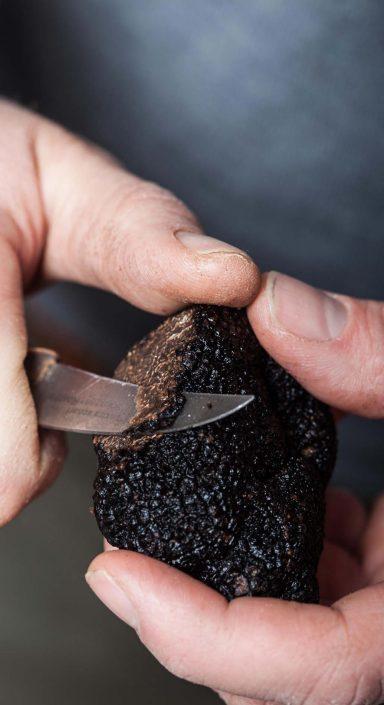 controle de la qualité de la truffe